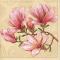 Цветы и растения <sup>34</sup>